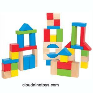 50 Colored Maple Hardwood Blocks