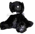 Shining Stars Friends Black Cat