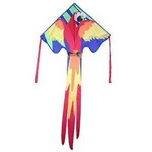 Kites: Baby Bat, Delta, Dragon, Stunt